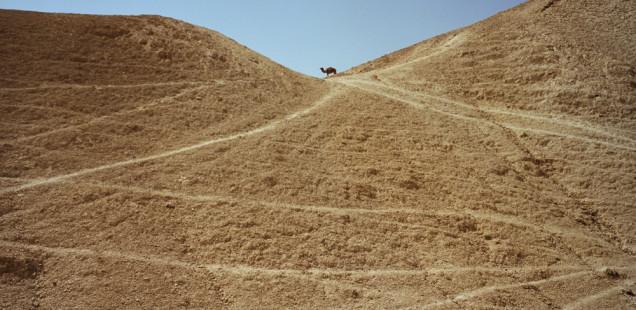 Aviad Tal -  Drainage divide