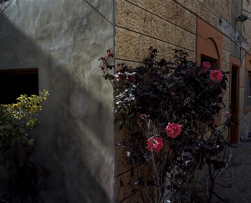 Aviad Tal -  Drainage divide  (12)