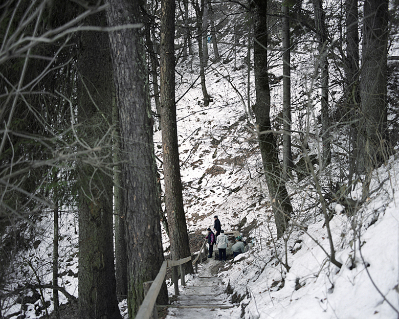 Old Road, source I, winter