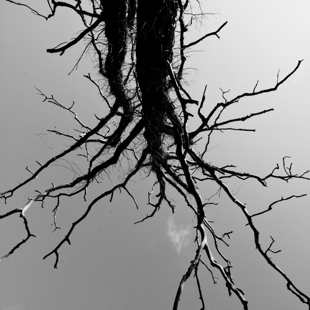 FABIENLECOQ.TREESOME-03