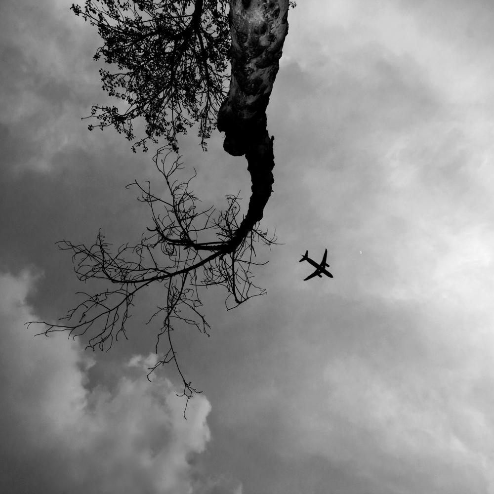 FABIENLECOQ.TREESOME-13