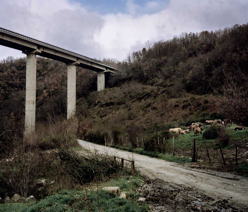 Palermo4