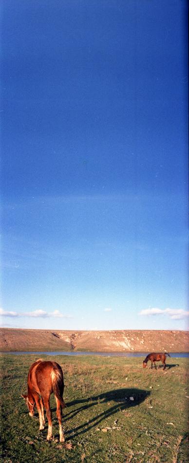 Tudor Stanica - Heaven backlog 01