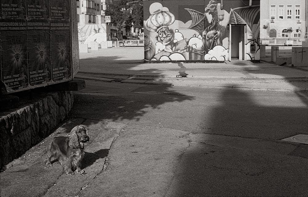 Virgil Mlesnita - On happiness street (3)