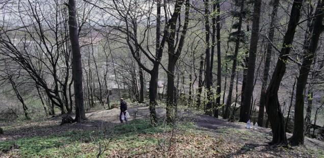 Lucian Bran – Back to Wellhead