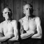 Elin Hoyland - The Brothers