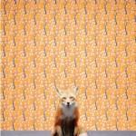 Catherine Ledner – Animals