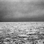 Mateusz Sarello - Swell
